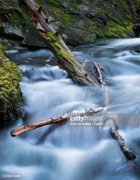 scenic view of waterfall in forest - arne jw kolstø stock pictures, royalty-free photos & images