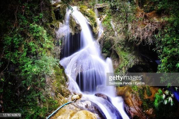 scenic view of waterfall in forest - haridwar stock pictures, royalty-free photos & images