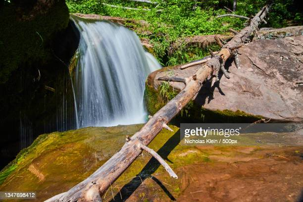 scenic view of waterfall in forest - klein stock pictures, royalty-free photos & images