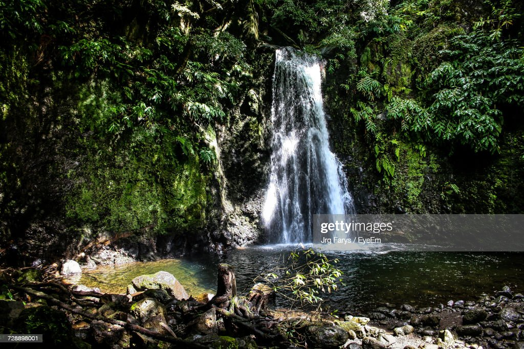 Scenic View Of Waterfall In Forest : Foto de stock