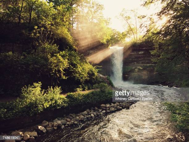 scenic view of waterfall in forest - hilton head stock pictures, royalty-free photos & images