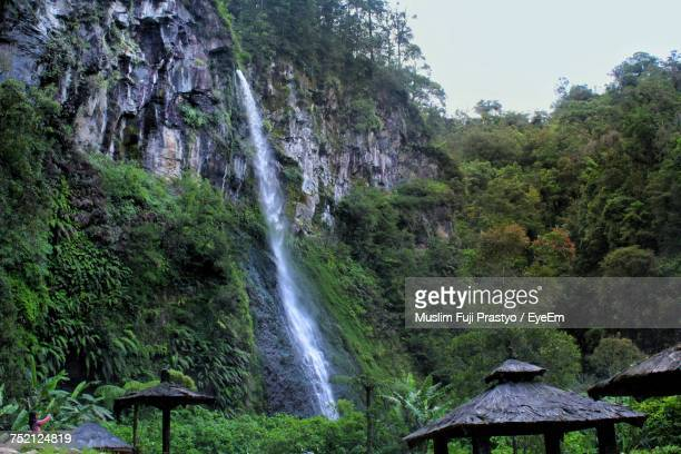 scenic view of waterfall in forest - bogor stock pictures, royalty-free photos & images