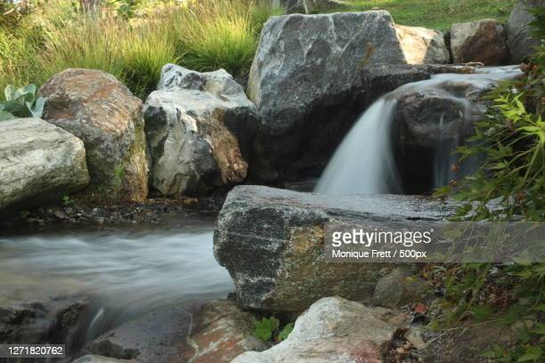 scenic view of waterfall in forest, yonkers, united states - yonkers stock pictures, royalty-free photos & images