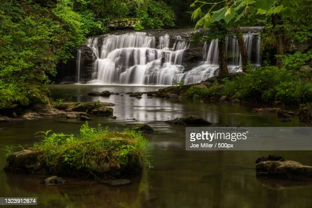 scenic view of waterfall in forest,blountsville,alabama,united states,usa - nature stock pictures, royalty-free photos & images