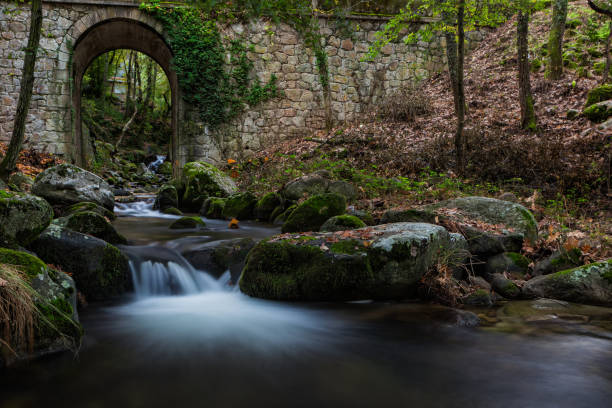 Scenic view of waterfall in forest,Cabezuela del Valle,Extremadura,Spain