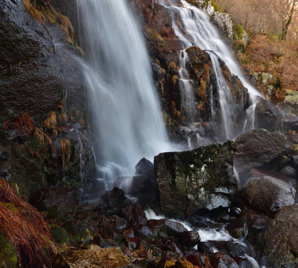 Scenic view of waterfall in forest,Cobreros,Zamora,Spain