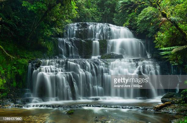 scenic view of waterfall in forest,purakaunui falls road,new zealand - falls road stock pictures, royalty-free photos & images