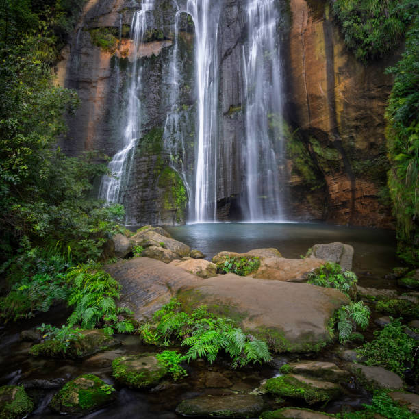 Scenic view of waterfall in forest,Shine Falls Track,Putorino,New Zealand