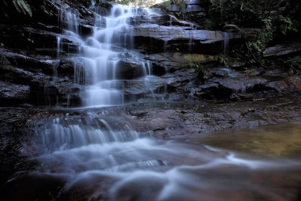Scenic view of waterfall in forest,Somersby Falls Walking Track,Somersby,New South Wales,Australia