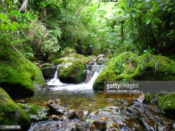 scenic view of waterfall - brook mitchell stock pictures, royalty-free photos & images