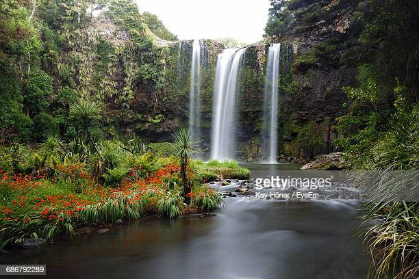 scenic view of waterfall - whangarei heads stock pictures, royalty-free photos & images