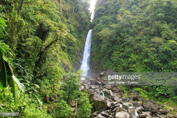 scenic view of waterfall - dominica stock pictures, royalty-free photos & images