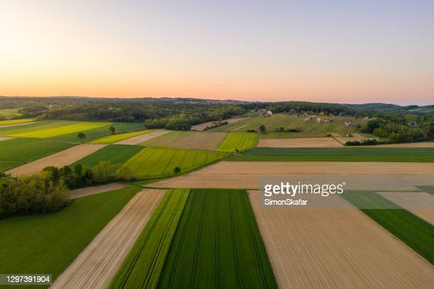 scenic view of wheat field - patchwork stock pictures, royalty-free photos & images
