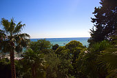 scenic view on a sea and blue sky  with palms and trees