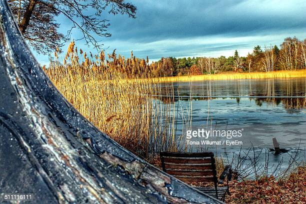 Scenic view on lake