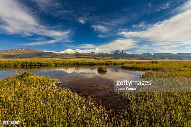 scenic view on the ukok plateau. altai mountains. - anton petrus stock pictures, royalty-free photos & images