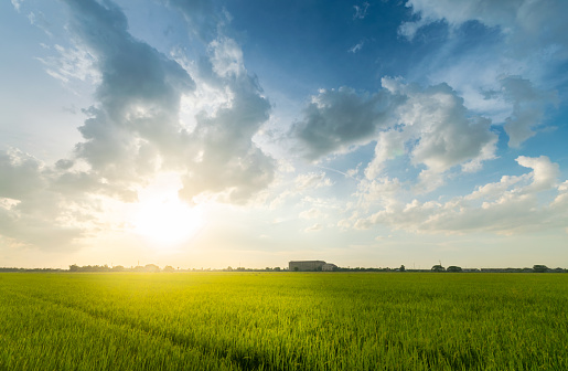 Scenic View Sun Shining Over The Field Against Sky During Sunset - gettyimageskorea