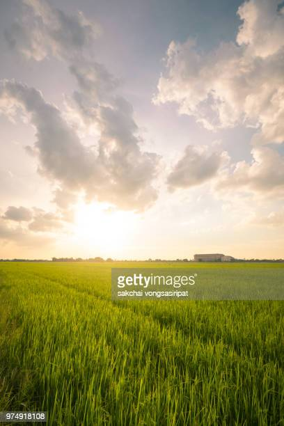 Scenic View Sun Shining Over The Field Against Sky During Sunset,