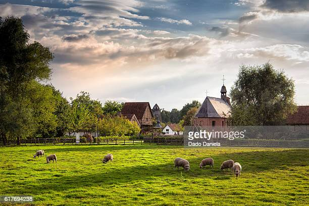 scenic village - farmhouse stock pictures, royalty-free photos & images