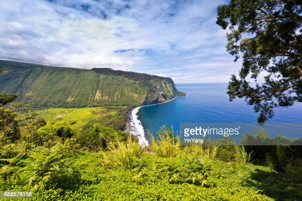 schilderachtige waipio valley, big island, hawaii - waipio valley stockfoto's en -beelden