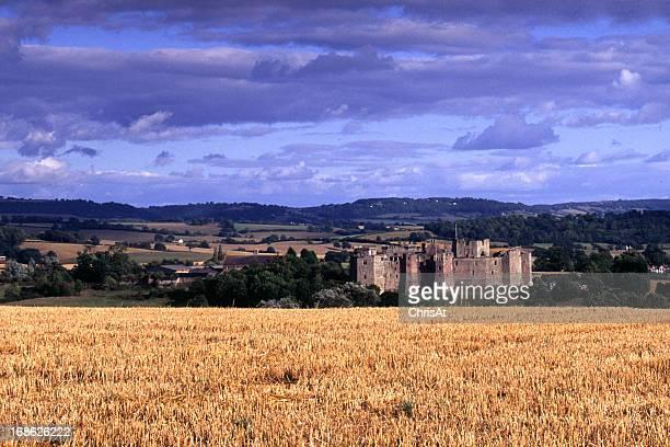 Scenic Wales - Raglan Castle