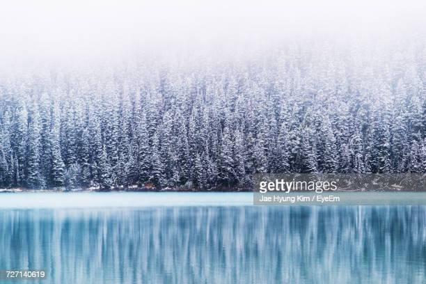 scenic winter landscape - lake louise stock photos and pictures