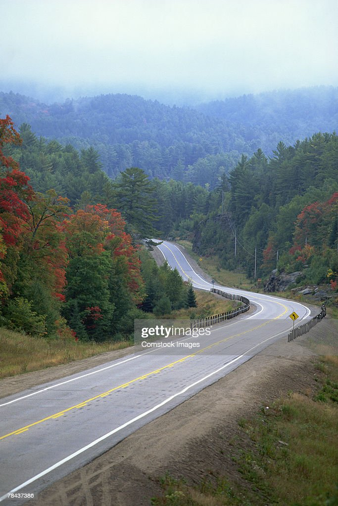 Scenic wooded highway : Stockfoto