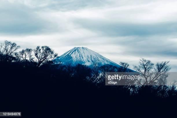 Scenics view of snowcapped Mount. Fuji (Fujiyama) against sky