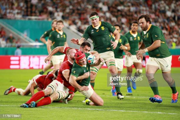Schalk Brits of South Africa scores his team's eighth try during the Rugby World Cup 2019 Group B game between South Africa and Canada at Kobe Misaki...