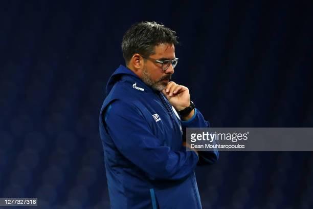 Schalke 04 manager / Head Coach, David Wagner looks on prior to the Bundesliga match between FC Schalke 04 and SV Werder Bremen at Veltins-Arena on...