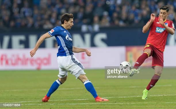 Schalke's Benjamin Stambouli and Hoffenheim's Nadiem Amiri vie for the ball during the German Bundesliga soccer match between FC Schalke 04 and TSG...