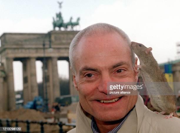 Schauspieler Dieter Laser spürt 2541997 am Brandenburger Tor in Berlin das lebhafte Interesse von Ratte Nina Die ungewöhnliche Begegnung fand während...