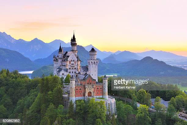 schloss neuschwanstein castle, schwangau, ostallgäu, allgäu, swabia, bavaria, germany, europe - neuschwanstein castle stock pictures, royalty-free photos & images