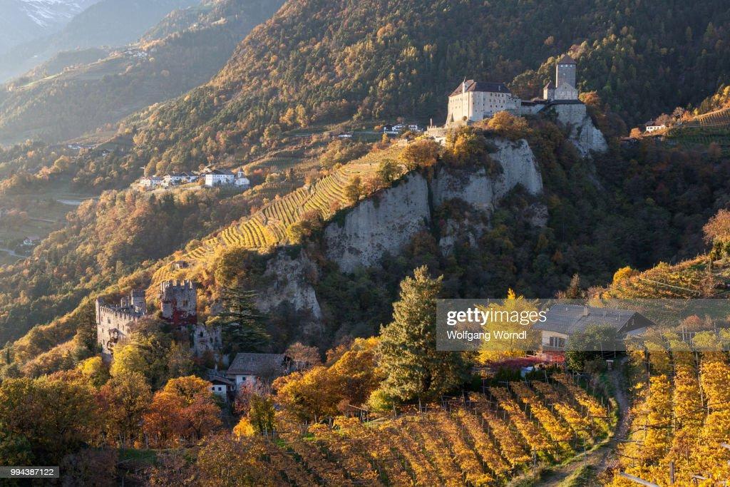 Schloss Tirol : Stock-Foto