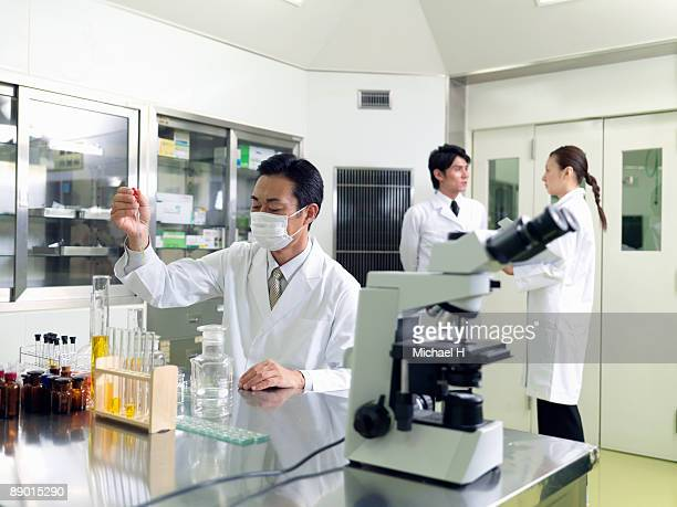 scholars who work at laboratory - place of research stock pictures, royalty-free photos & images