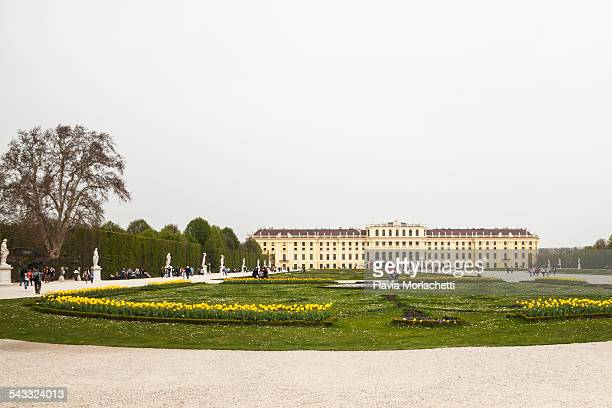 schonbrunn palace - grand duchess stock pictures, royalty-free photos & images