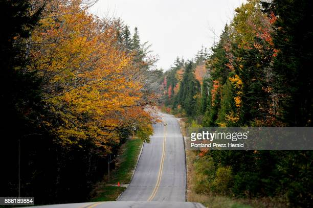 Schoodic Loop Rd near Schoodic Woods Campground in Acadia National Park Thursday October 19 2017