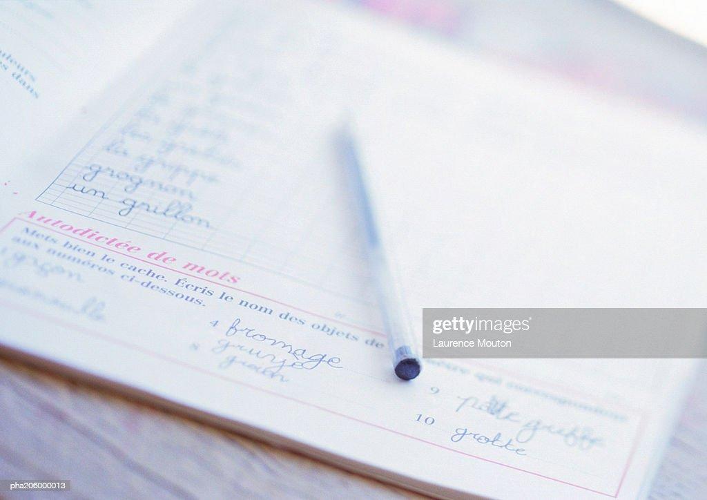 School book and ballpoint pen. : Stockfoto