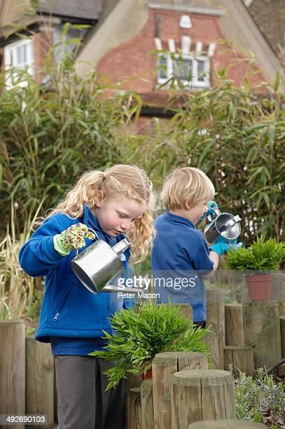 School boy and girl watering plants in garden