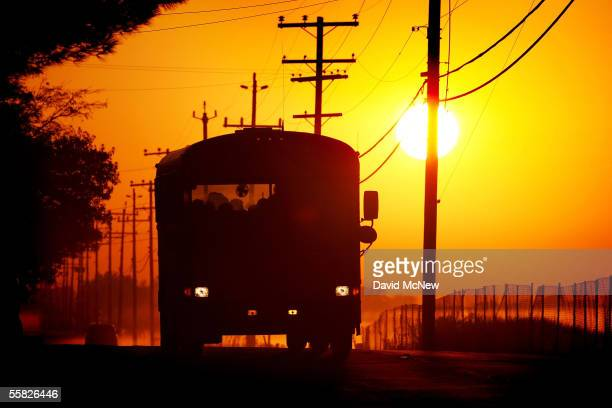 School bus carries children at sunrise on Bethel Island, one of the residential islands surrounded by levees that hold back the higher waters of the...
