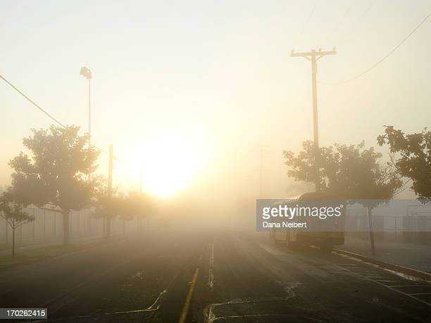 school bus on a foggy morning - education stock pictures, royalty-free photos & images