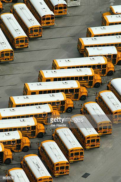 school buses in parking lot - joe raedle foto e immagini stock