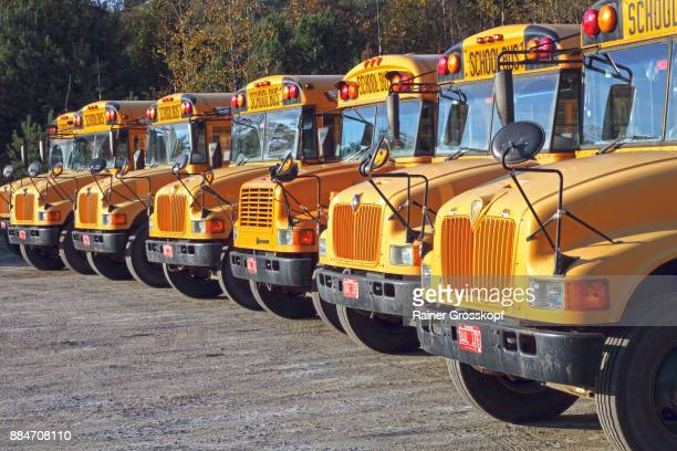 school buses - rainer grosskopf stock pictures, royalty-free photos & images