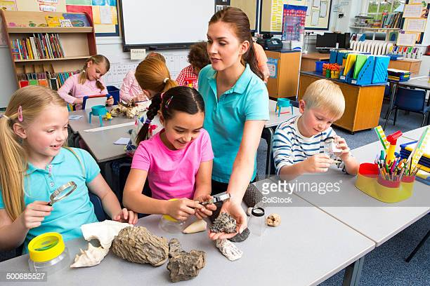 school children in science lesson - physical geography stock pictures, royalty-free photos & images