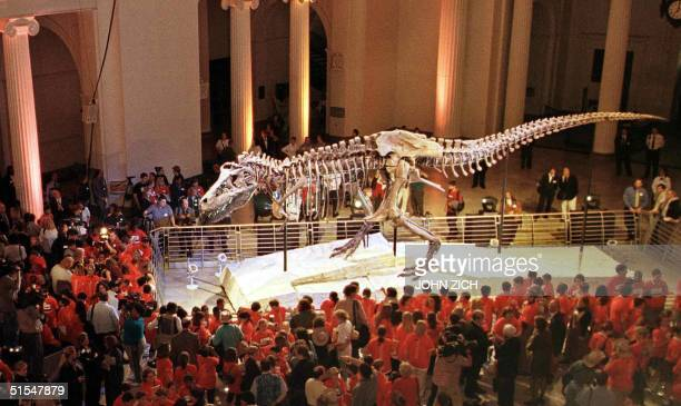 School children invited from across the country get the first glimpse of Sue the Tyranosaurus Rex skeleton at an unveiling ceremony at the Field...