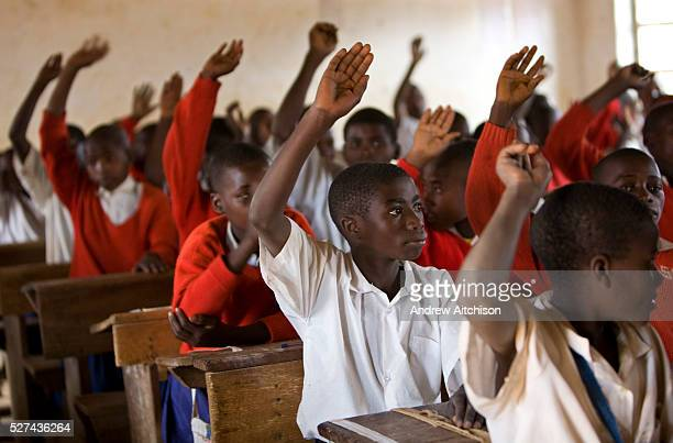 School children put up their hands to answer questions in Ikuna village primary school during class run by a Student Partnerships Worldwide volunteer...