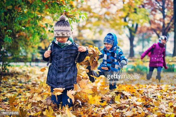 school children running in autumn park - young leafs stock photos and pictures