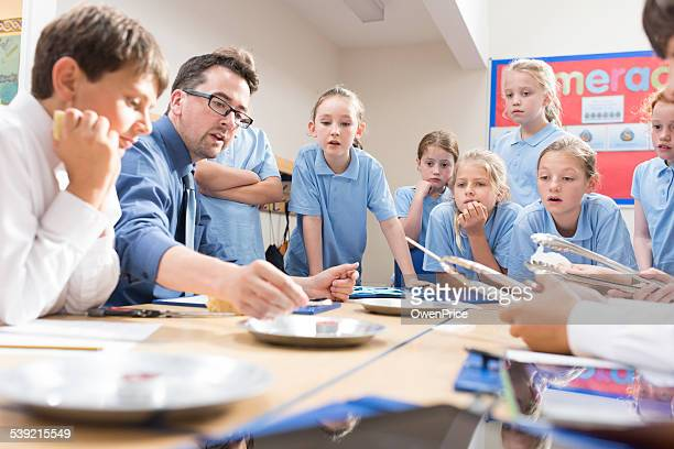 uk school children science lesson - differential focus stock pictures, royalty-free photos & images