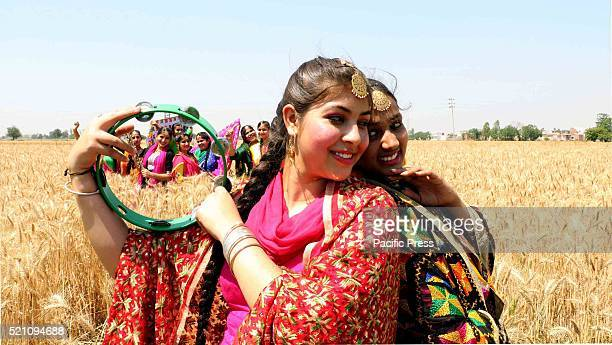School girls during the celebration of Baisakhi Festival in a wheat field The Baisakhi is the beginning of the new season People of North India...