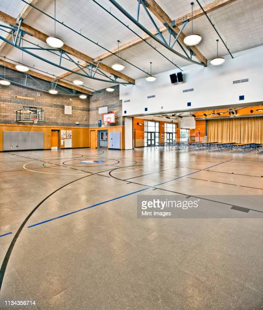 school gymnasium - sport venue stock pictures, royalty-free photos & images
